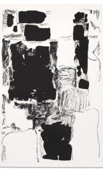 ingrid_floss_ot_3-farbiges-s_w-i-iii-2015-61-x-91-cm-lithografien-gedruckt-auf-bfk-rives-270g-auflage-8