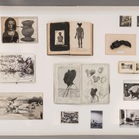 Herbert Nauderer Parasite Island-2- one of five table vitrines, drawings, objects, books,