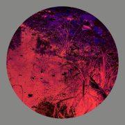 heyer retina_3.1860×0