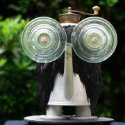 sjonbrands-birds-regenfluiter-20110811-0011