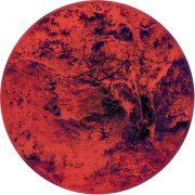 M.Heyer-Retina #5